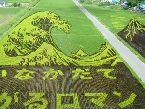 Rice Festival
