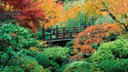portlands-japanese-gardens-bridge