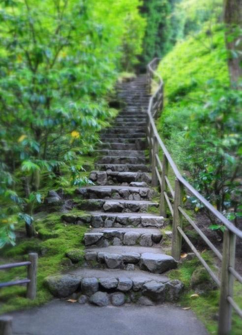 portlands-japanese-gardens-stairway